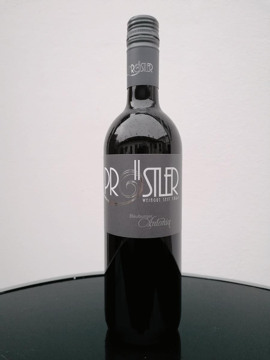 Blauburger Antonia - Weinbau Pröstler